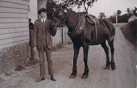 Fred Fellingham horse at Brook Farm